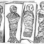 Tipi di fasciature (Sec.XVI)