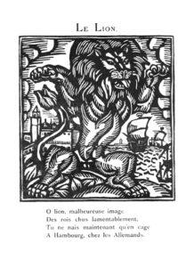 """Pubblicato nel 1911, """"Le bestiaire ou Cortège d'Orphée"""", prima raccolta di poesie di Guillaume Apollinaire, rappresenta una riedizione dei bestiari medioevali e si colloca in un punto d'intersezione tra la fine dell'Ottocento e l'inizio del Novecento, momento di forte crescita della poesia europea. Incisione """"il leone"""" di Raoul Dufy."""