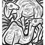 IL DROMEDARIO. Guillaume Apollinaire: Bestiario. Incisioni di Andrea Tampieri.