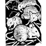 IL TOPO. Guillaume Apollinaire: Bestiario. Incisioni di Andrea Tampieri.
